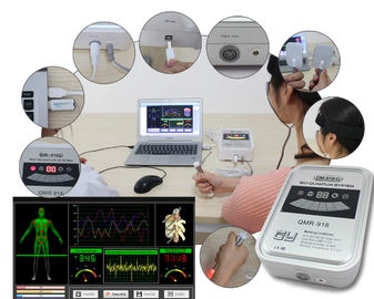 Body Health Quantum Resonance Magnetic Analyzer QRMA Software Updating Free