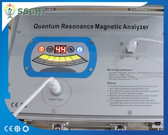 China Quantum Resonance Magnetic Analyzer  Body Health Analyzer & Massage Therapy 41 Reports supplier
